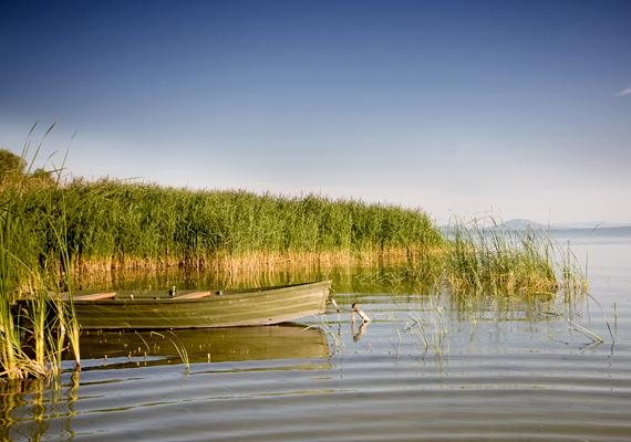 A Balaton nemcsak Magyarország, de Közép-Európa tekintetében is a legnagyobb tónak számít 594 négyzetkilométeres felületével. Kattints ide, és tudj meg róla néhány érdekességet!