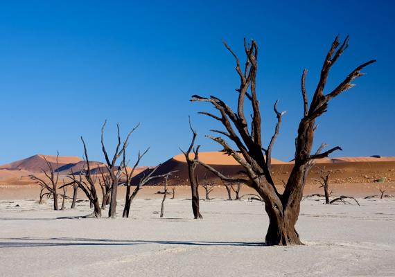 Az ötödik helyen szerepel a namíbiai Dead Vlei, melynek kilencszáz éves fái a napsütés miatt feketedtek meg, illetve a nedvesség hiánya miatt nem bomlanak le.