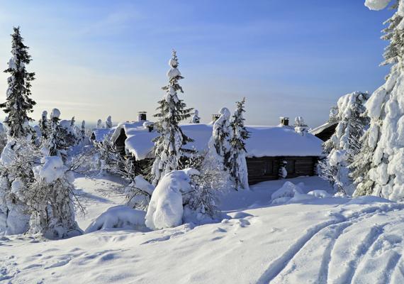 Romantikus szilveszter a havas hegyekben A síelés és a magas hegyek szerelmeseinek javasoljuk, hogy töltsék a szilvesztert baráti társasággal egy hüttében. Ausztria számos régiója remek ajánlattal várja a magyar turistákat. Érdemes körülnézned neked is a neten.