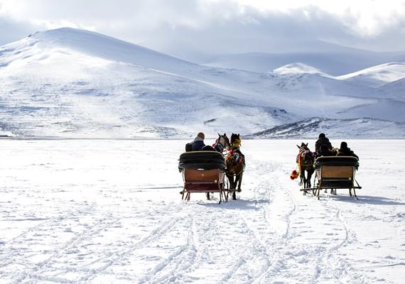 Szilveszter a vadregényes vidéken A Bakony vagy a Mecsek hegyei között számos kis falu vár, ahol távol a világ zajától, a természet közelségét élvezve köszöntheted az új évet. Ha szerencséd van, és hó is lesz szilveszterkor, akkor még a lovas szánkót is kipróbálhatod.