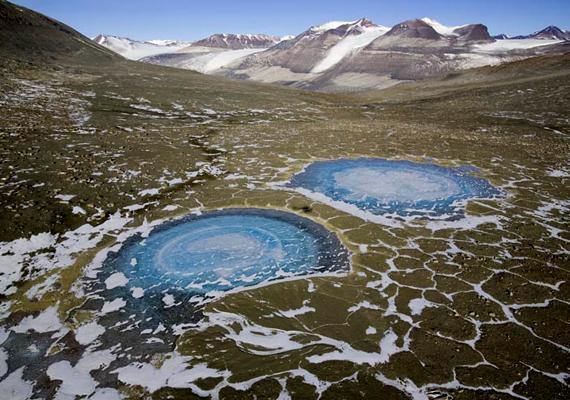 Ez a leginkább hómentes övezet az Antarktiszon, egyúttal a bolygó legfurcsább sivataga.
