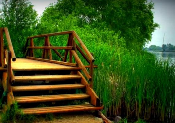A Duna-parton található tanösvény felnőttek és gyermekek számára egyaránt lehetőséget nyújt arra, hogy megszokott környezetükben vehessék szemügyre a növény- és állatvilágot.