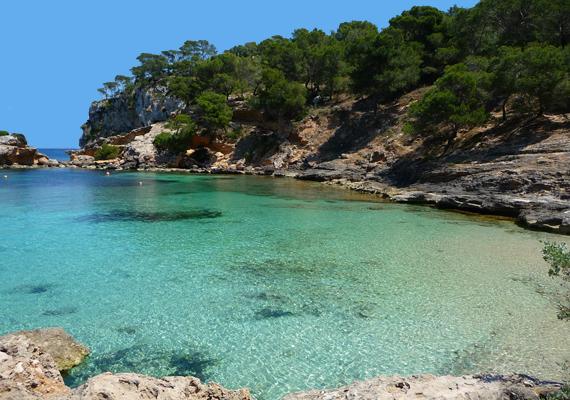 A Playa El Mago az első hivatalos naturista strand a spanyol Mallorcán. A strand a sziget délnyugati részén, a Portals Vells nevű faluhoz közel várja a kikapcsolódni vágyókat.