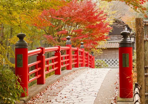 Csakúgy, mint Japánban, ahol a helyiek állítólag már-már extrém módon kedvesek és udvariasak.