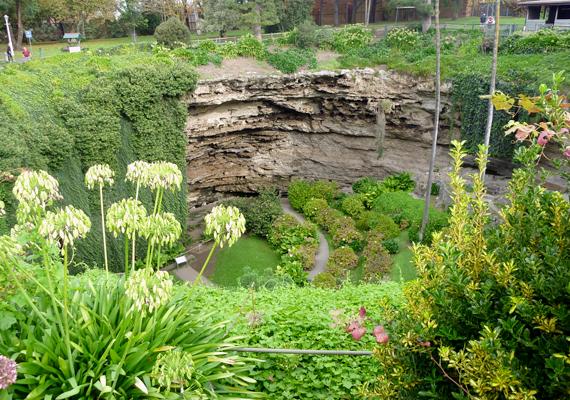 Az ausztráliai Mount Gambier a kráterek városaként is ismert - nem véletlenül. Vulkáni krátereket is magáénak tudhat, ugyanakkor számos víznyelőt is. A helyiek azonban igen kreatív módon használják ki a természet adta lehetőségeket: erre utal a gyönyörű kert is, melyet ez víznyelő árokban alakítottak ki.