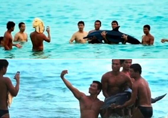 A képen látható férfiak egy kínai strandon találták meg a sérült delfint, azonban ahelyett, hogy segítettek volna rajta, kiemelték a vízből, és fényképezkedtek vele. A delfin nem sokkal később elpusztult.
