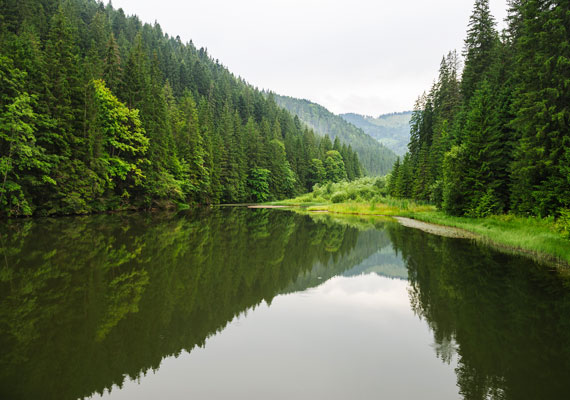 A Gyilkos-tó, másik nevén Vörös-tó Hargita megyében, a Hagymás-hegységben fekszik. Nemcsak Erdély egyik legszebb természeti csodája, hanem az egyik leglátogatottabb turistalátványosság is.