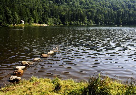 A Szent Anna-tó szintén a közkedvelt úti célok közé tartozik, sőt, úgy tartják, itt még vulkán is kitörhet. A gyönyörű tó ugyanis a Csomád-hegység kráterében fekszik.