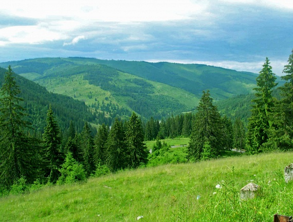 A Székelyföld legmagasabb csúcsa a Madarasi Hargita, ahol a fenyőerdők, tisztások és kanyargós kis ösvények nyújtanak szemet gyönyörködtető látványt. Az innen nyíló panorámának köszönhetően további mesés helyeket is megtekinthetsz, mint például a Gyergyói-havasokat vagy a Hagymás-hegységet. Azonban nemcsak a természet rajzolta, káprázatos látvány lenyűgöző, de itt csakugyan szinte harapni lehet a levegőt.