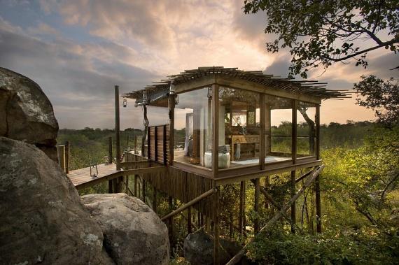 A Dél-afrikai Köztársaságban akár egy luxusfaház is bérelhető az arra üdülő turisták számára. A Kingstone Treehouse privát lakosztályai az erdő közepén, pontosabban fölötte helyezkednek el, így a dzsungel testközelből megismerhetővé válik.