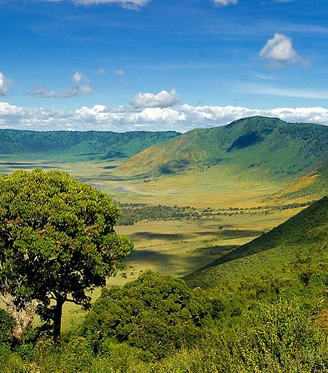 Ngorongoro CraterA Tanzániában található kráter valójában egy hatalmas, önmagába omlott vulkáni kaldera, mely egyben a Föld legnagyobb egyben maradt, kihűlt, száraz kalderája. Különlegességét helyenként csaknem 2500 méter magas pereme, egyedülálló panorámája, nem utolsósorban pedig rendkívül gazdag állatvilága adja.