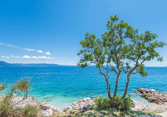 Rabac az Isztria egyik legnépszerűbb úti célja, melynek kitűnő éghajlatát, tiszta levegőjét már a 19. században felfedezték. Tengerpartjának festői szépségét az adja, hogy egy fenyő- és olajfákkal borított öbölben fekszik. A strandok nagyrészt kavicsosak, de néhány sziklás szakaszt is lehet találni. Maga a város korábban halászfalu volt, és ezt az atmoszférát az időközben felépült szállodák és nyaralók ellenére máig megtartotta.
