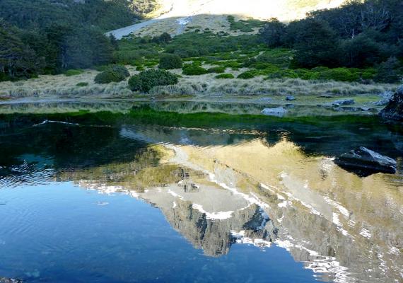 Az Új-Zélandon, a Nelson Lakes Nemzeti Park területén található Blue Lake-et nem véletlenül tartják a világ talán legtisztább vizű tavának.