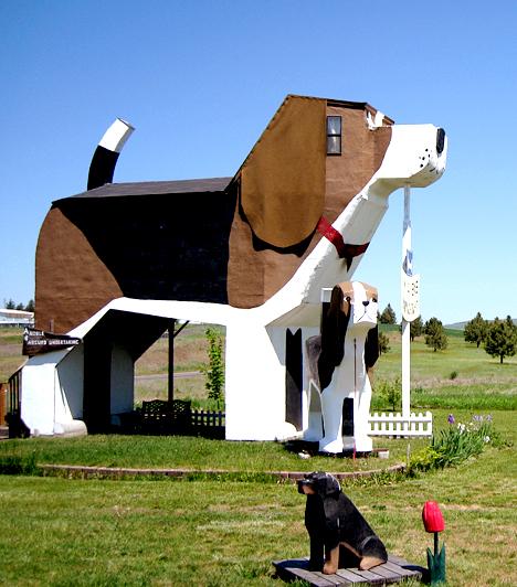 A kutyahotelAz idahói Cottonwoodban található Dog Bark Park Inn szlogenje szerint kutyaházban aludni jó. A hotel nemcsak kívülről formáz kutyát, de enteriőrjei is hasonló tematika köré épülnek.