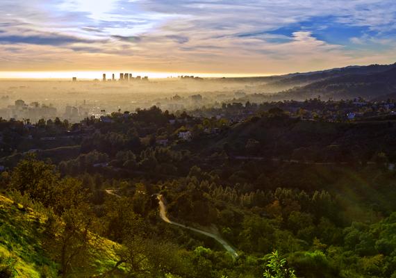 A Los Angeles-i Griffith Park valódi vidéki hangulatot teremt a nagyvárosban. A parkban kertek, állatkertek és obszervatórium is található.