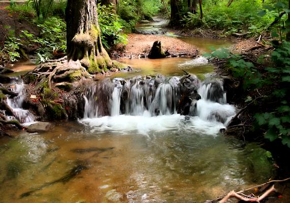 Szilvásvárad környéke nem szenved hiányt vízesésekben: a patakvölgy több hasonló csodát is magáénak tud.