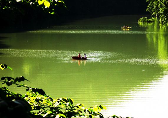 Nem véletlen, hogy a környék hosszú ideje az egyik legkedveltebb üdülőhely az országban, ritka festői látvány tárul itt a látogatók szeme elé. A Hámori-tó déli partján turistaösvény vezet pihenőkkel, emellett a csónakázásra is lehetőséget ad, bár a tónak csak egy részén.