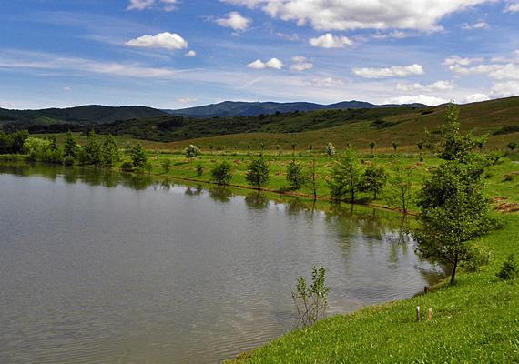 A nógrádi Maconka-tó a Mátra közelségében fekszik. A tó horgászparadicsomként is ismert: vonzza az amatőr szinten és a sportként horgászókat is, de maga a táj is gyönyörű.