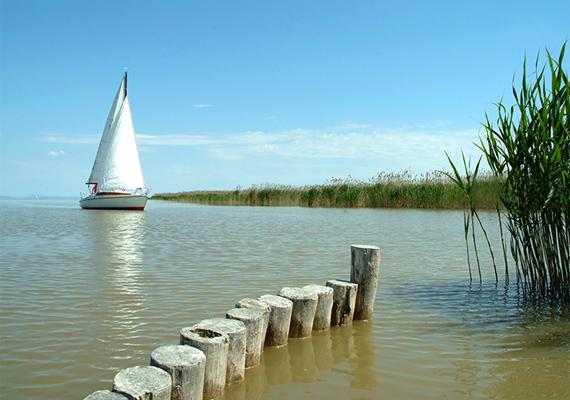A Sopron mellett fekvő Fertő-tó hőmérséklete nyaranta akár a 30 fokot is elérheti.