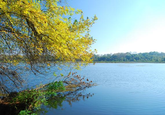 A Tisza-tó Magyarország legnagyobb mesterséges tava, környéke a falusi turizmusra épül.