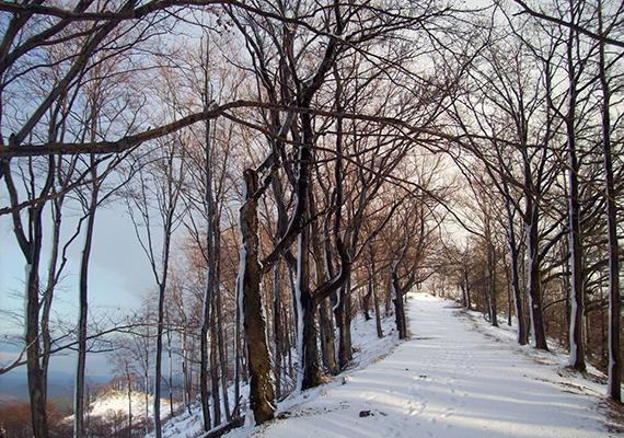 A Mátra Parádsasvárt körbeölelő nyugati hegykoszorújáról készült a kép.