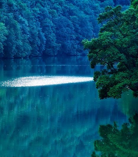 Holdfényes tópart  A tóparti sétány olyan, akár egy romantikus filmből kiragadott díszlet, mely szerelmes andalgásokra csábít. Érdemes holdfényben is megcsodálni a nyugodt víztükröt, ami ilyenkor sejtelmes kékségbe borul, mintha neonlámpákkal világítanák meg a medrét.