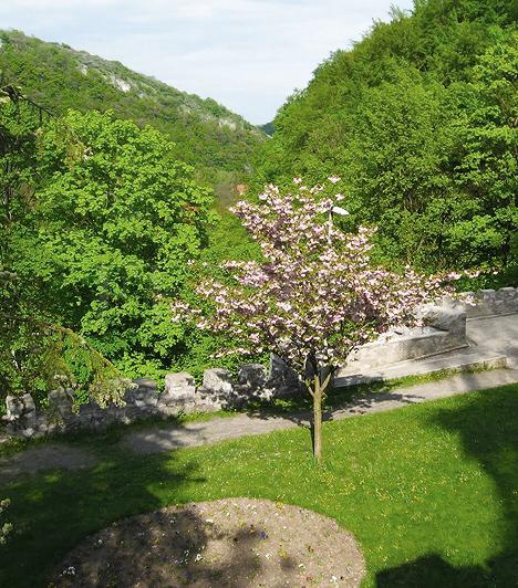 FüggőkertA Palotaszálló egy meredek emelkedő tetején található, melynek megerősítésére egy támfalakkal tagolt, teraszos sétányrendszert alakítottak ki. A függőkertet két oldalról a Szinva és a Garadna patak határolja, legtetején pedig a szálló impozáns falai és tornyai nyújtózkodnak az ég felé. Az aljáról kőhídon át, kis sétával Felsőhámor faluja is elérhető. A hatalmas park tele van botanikai ritkaságokkal, melyek tavasszal virágszirmokba és illatfelhőbe burkolják a csendes kis sétányokat.