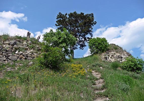 A Nógrád megyei Buják lakói nem olyan buják, ellenben izgalmas látnivalókat, többek között egy várromot tudhatnak magukénak.