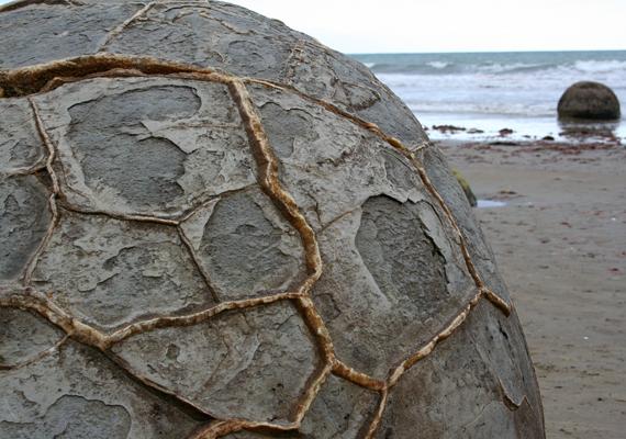 A Moeraki-gömbsziklákat teknősköveknek is nevezik, köszönhetően a felületükön kirajzolódó formáknak, melyek részben az erózió révén alakultak ki.