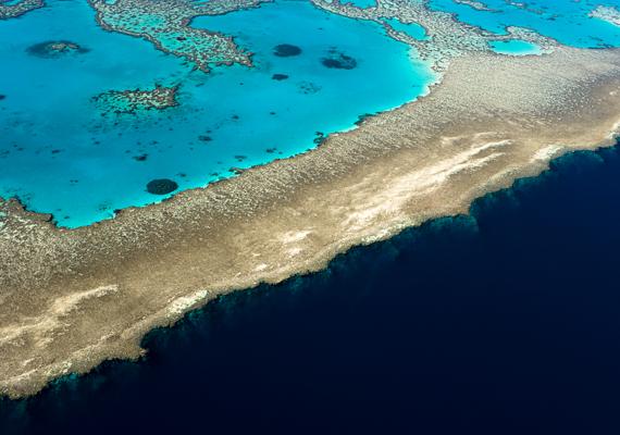 Pusztulása esetén továbbá Ausztrália partjait is veszély fenyegetné, komoly szerepet játszik ugyanis a hullámok lefékezésében.