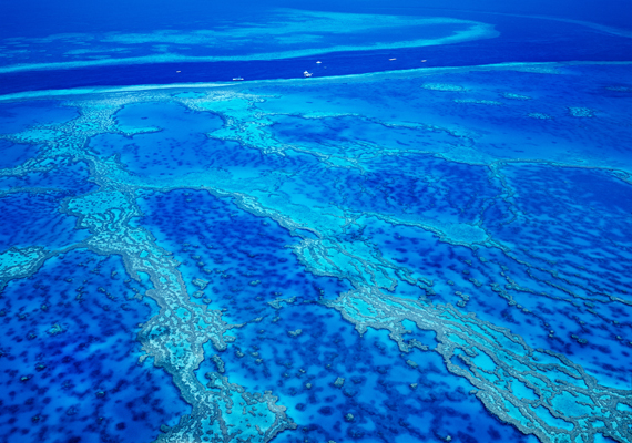 A Nagy-korallzátony 1981 óta az UNESCO Világörökség része, egyúttal bolygónk egyik legmeghatározóbb természeti csodája.
