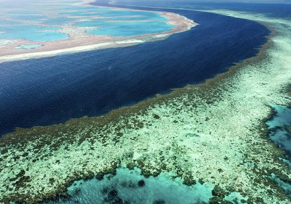 A kétezer kilométer hosszan húzódó korallzátony a világ legnagyobb olyan természeti képződménye, melyet élő organizmusok hoztak létre.
