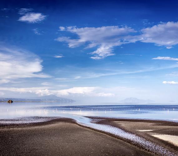 A Nátron-tó a Nagy-hasadékvölgyben, Tanzánia északi részén terül el. A világ leglúgosabb, egyúttal legsósabb tavának tartják, sőt, száraz időszakban a tó vizének sószintje tovább növekszik a párolgás következtében.