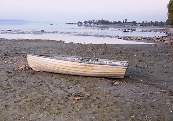 A Balaton vize idén rekordszintet ért el, olvasóink azonban arra is kíváncsiak voltak, miként festettek partjai kiszáradva, az elmúlt időszak legaszályosabb éveiben. Kattints ide a teljes cikkért!