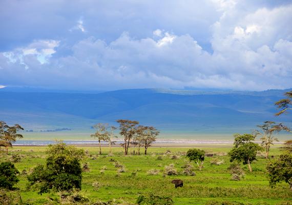 A Ngorongoro ma természetvédelmi terület, egyúttal az UNESCO Világörökség része.