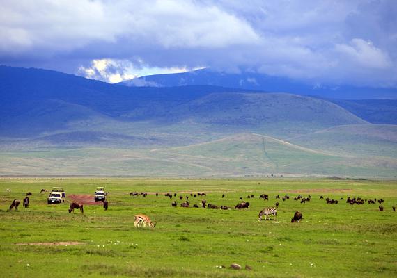 A tanzániai Ngorongoro-kráter egy óriási kaldera, egy önmagába roskadt vulkán.