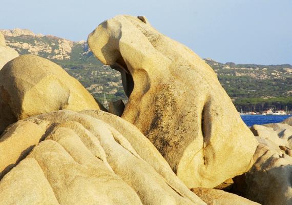 Az olaszországi Szardínián látható ez a kedves jegesmedve szikla, amit a tenger vize alakított ki.