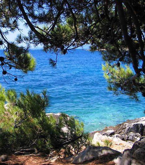 KandarolaA Kandarola naturista strand a Frkanj-félsziget déli részén fekszik, épp szemben Palittal, Rab városának modern külvárosával. Palitból hajóval juthatsz el a másfél kilométer hosszú, fákkal ölelt, főként sziklás parttal rendelkező strandra.