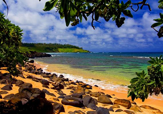 Hawaii minden világutazó álma: izgalmas kultúra, vad természeti tájak és mesés tengerpartok. Kattints ide a háttérképért!