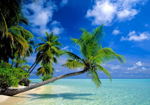 Bár a Maldív-szigeteket erőteljesen fenyegeti a globális felmelegedés miatti tengerszint-emelkedés, partjainak többsége ma is gyönyörű. Kattints ide a háttérképért!