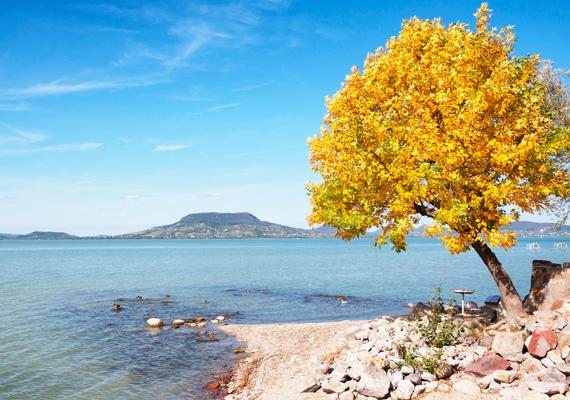 A kék víz és a sárga falevelek kontrasztja is mutatja, miért annyira szép ez az évszak. A háttérképet itt töltheted le.