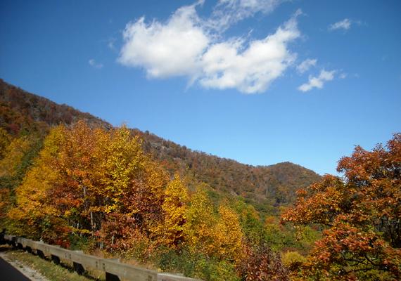 A festői, ősszel is gyönyörű Doughton Park szintén Amerikában, Észak-Karolinában fekszik. A háttérképért kattints ide!