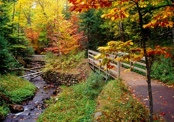 A New Englandben található Vermont világszerte ismert erdeinek páratlan őszi lombkoronáiról. A háttérképért kattints ide!