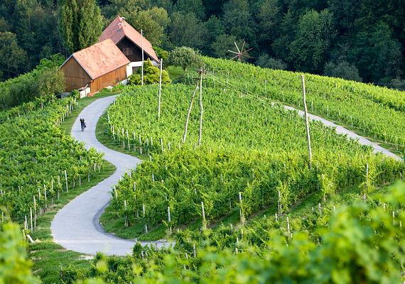 A szomszédos Szlovénia megelőzött minket 30%-kal.