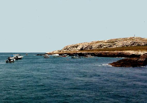 Tiltják a természet bármiféle károsítását, többek között a halászatot is. A szigetek ugyanis számos ritka madár-, illetve halfajnak otthont adnak.
