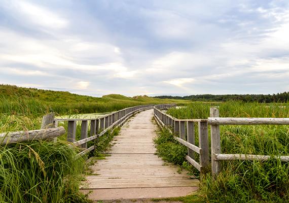 A helyiek nagy hangsúlyt helyeznek arra, hogy megőrizzék a sziget hamisítatlan, vidéki báját, illetve vadregényes voltát. A kép Cavendish partjainál készült: a sorozat alkotói a tájat bemutató vágásokhoz az eredeti helyszínen is készítettek felvételeket.