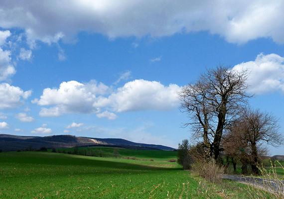 A Gerecsében található Pusztamarót mára elnéptelenedett területét csak szellemfaluként emlegetik, közigazgatásilag sem jelent önálló települést, a hely Nyergesújfaluhoz tartozik. A képen a Pusztamarót felé vezető út látható.