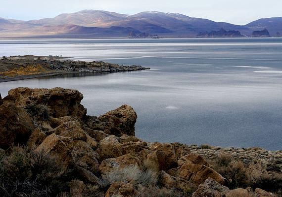 A tó utolsó maradványa az ősi Lahontan-tónak, mely egykor, a késői jégkorszakban Nevada északnyugati részén jelentős területet borított be.