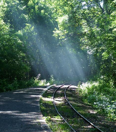 Gemenci-erdő  Hazánk leghíresebb erdeje nem csupán a családok, de a párok kedvence is, köszönhetően buja rengetegének, hangulatos belső tavainak és holtágainak, valamint a sejtelmes mocsárvilágon átvezető utaknak. A környéket kisvasúttal is bejárhatjátok.  Kapcsolódó cikk: A legromantikusabb erdő itthon »