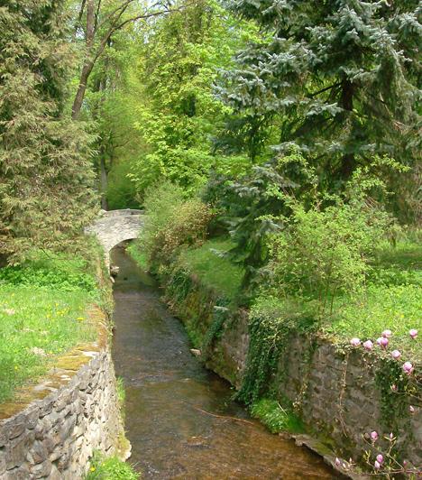 Zirc  A vadregényes Bakony fővárosaként ismert Zirc az ország legmagasabban fekvő városa, így kiváló kiindulási pontot jelent a különleges kirándulásokhoz, például, ha a meseszép Cuha-völgyben tennétek egy sétát. További kuriózum a híres arborétum, ahol hársfák, libanoni cédrusok és mamutfenyők alatt andaloghattok.